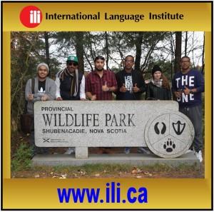 wildlifepark1